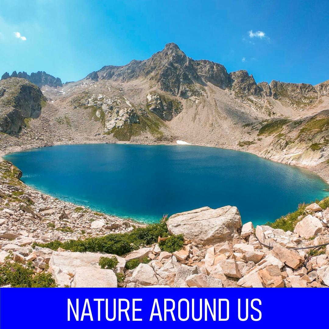 nature around us